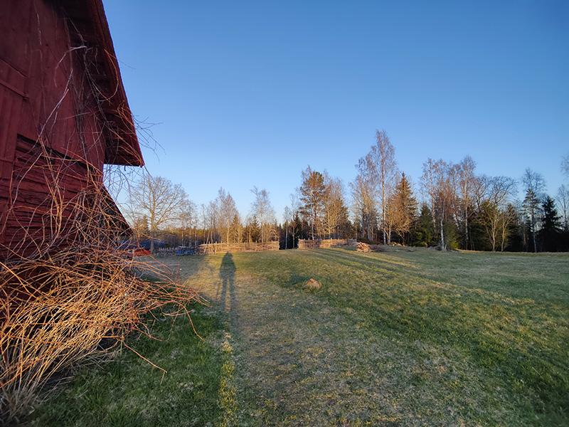 Man ser ena änden av den faluröda ladan och bortanför den, ljusgrön gräsmatta, ett staket flätat av pinnar och sen skogen. Vackert gyllene kvällsljus över alltihop och min skugga som är lååång.