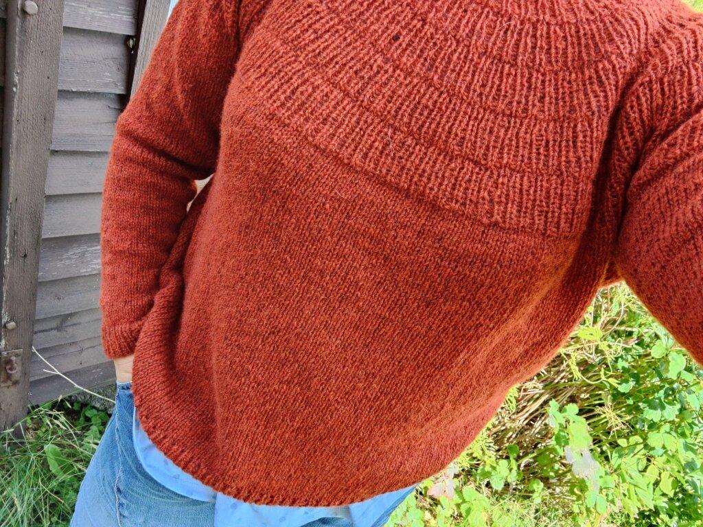 Jag har hållit kameran mot mig själv och tagit en bild där man ser den rostbruna stickade tröjan.